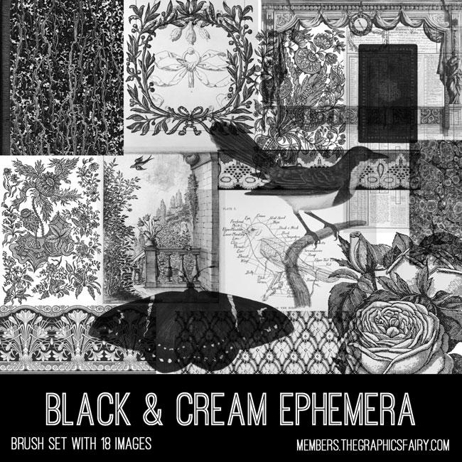 vintage black cream ephemera brush set