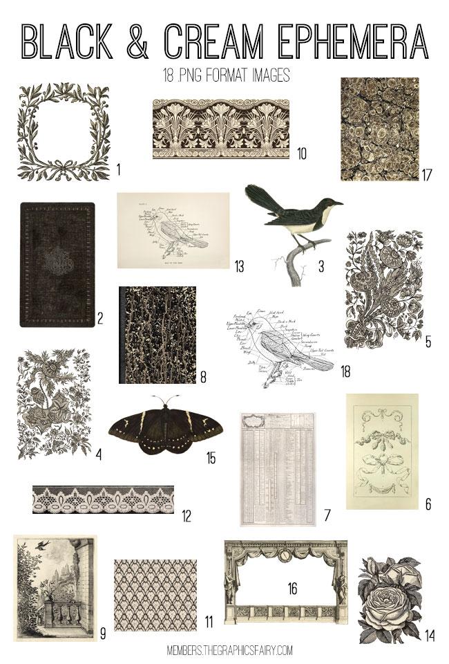 vintage black cream ephemera digital image bundle