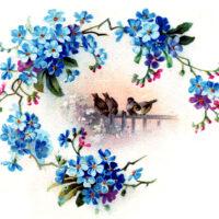 blue floral wreath birds scene clipart
