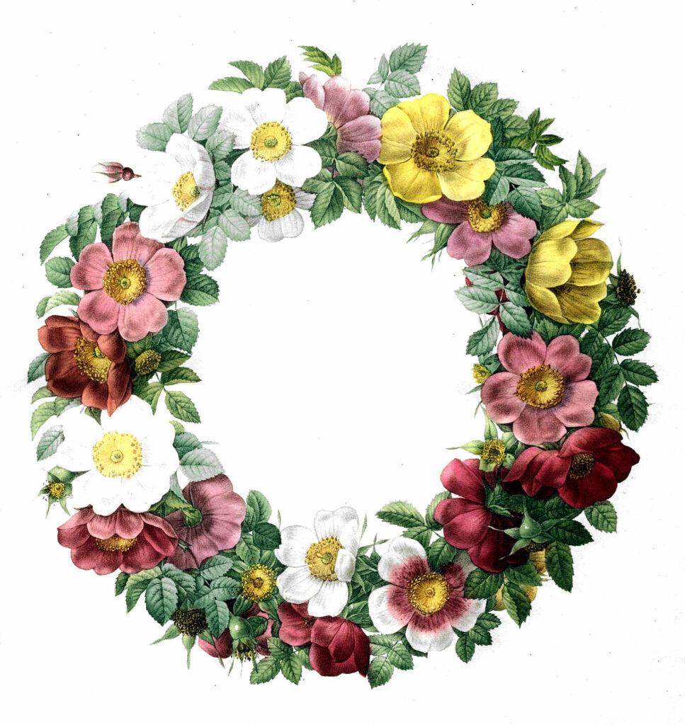 colorful floral wreath clipart