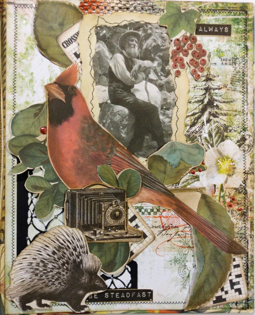 nature cardinal camera junk journal cover