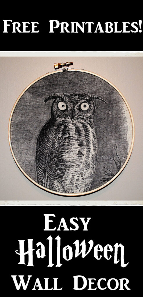 Halloween Wall Decor with Owl Pinterest Graphic