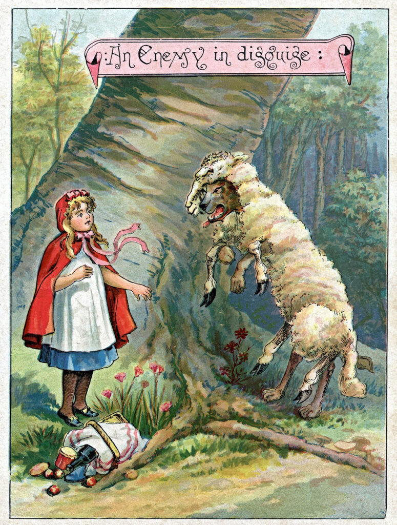 Red Riding Hood sheep forest illustration