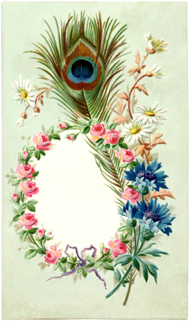 floral wreath frame peacock feather illustration