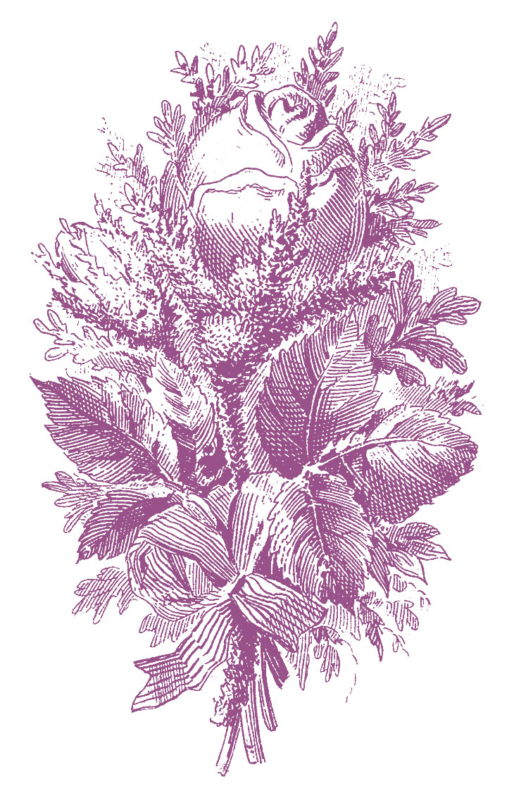 Printers Specimen Beautiful Engraved Roses 5 Options