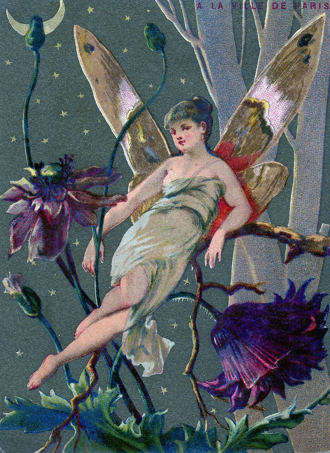 Vintage graphic fairy in moonlight the graphics fairy - The graphics fairy ...