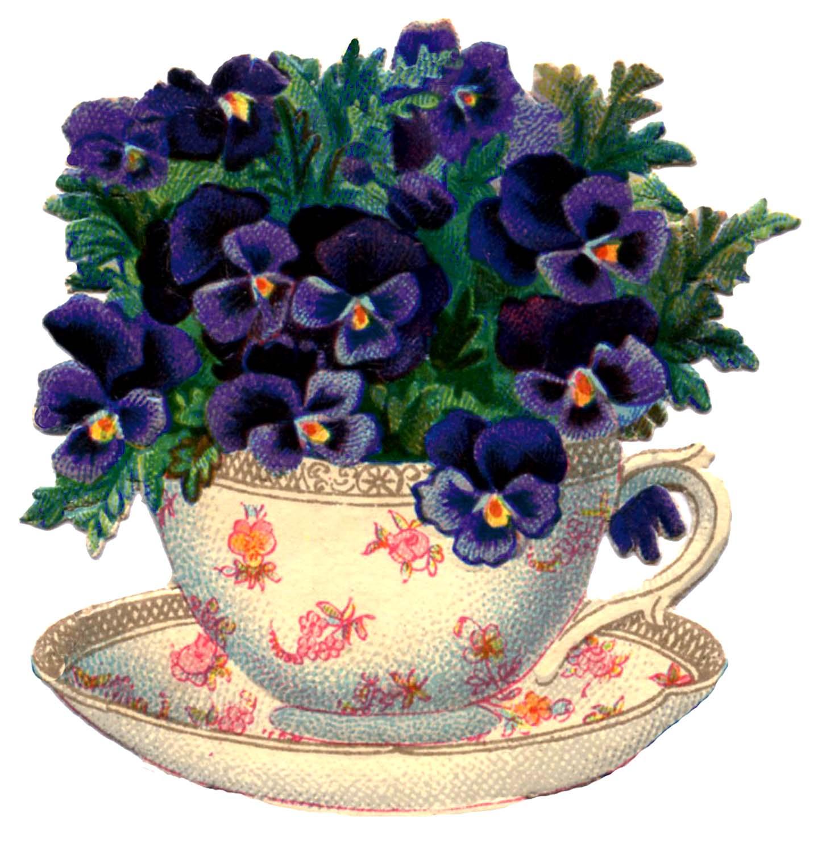 http://thegraphicsfairy.com/wp-content/uploads/blogger/-2HHsUpNfHZ4/T3uKzxsuvSI/AAAAAAAARPo/BaKVUAYVNGo/s1600/Teacup-Pansy-Vintage-Image-Graphics-Fairy2.jpg