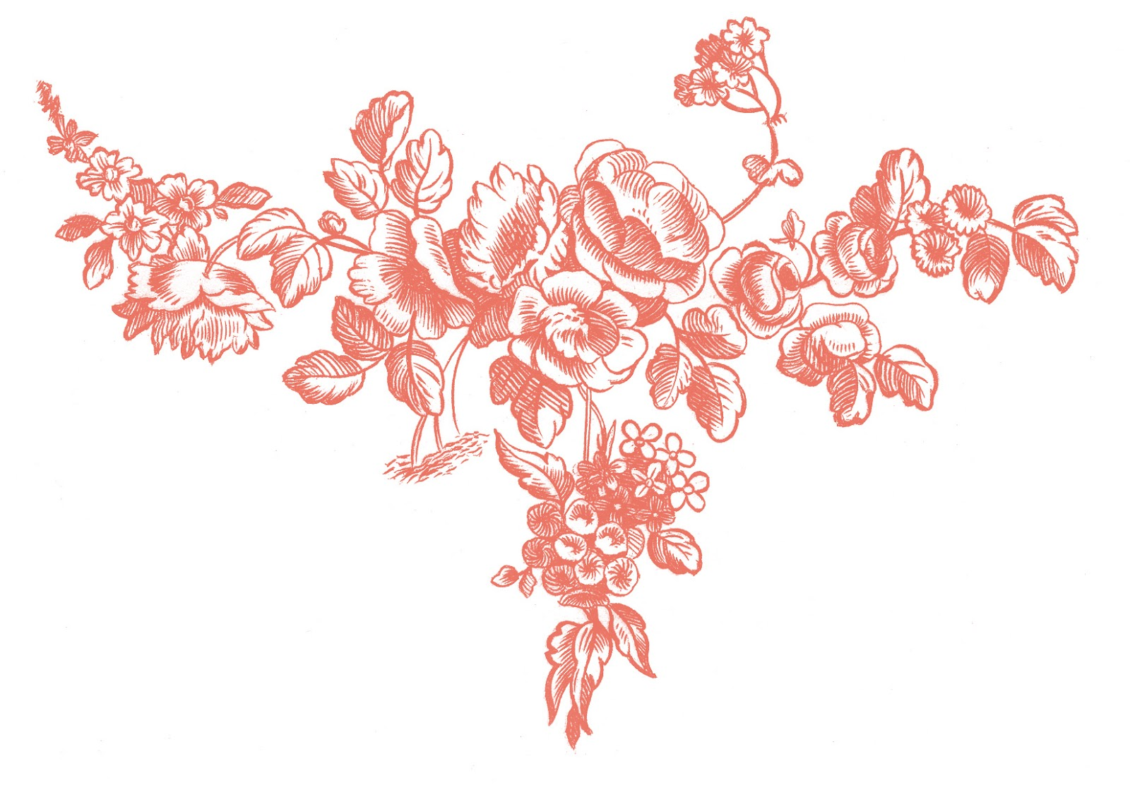 Antique graphic engravings french roses the graphics fairy - The graphics fairy ...