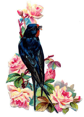 Victorian Bird Image Swallow With Pink Roses The