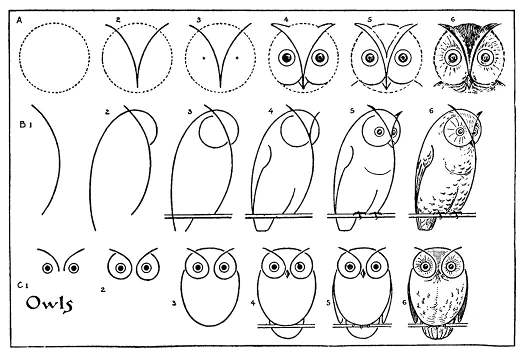 Kids Vintage Printable Draw Some Owls The Graphics Fairy