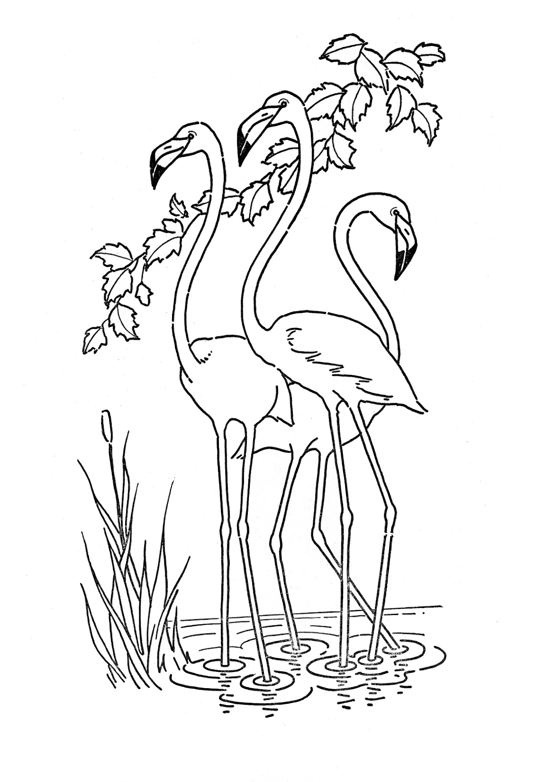 kids printable flamingo coloring page