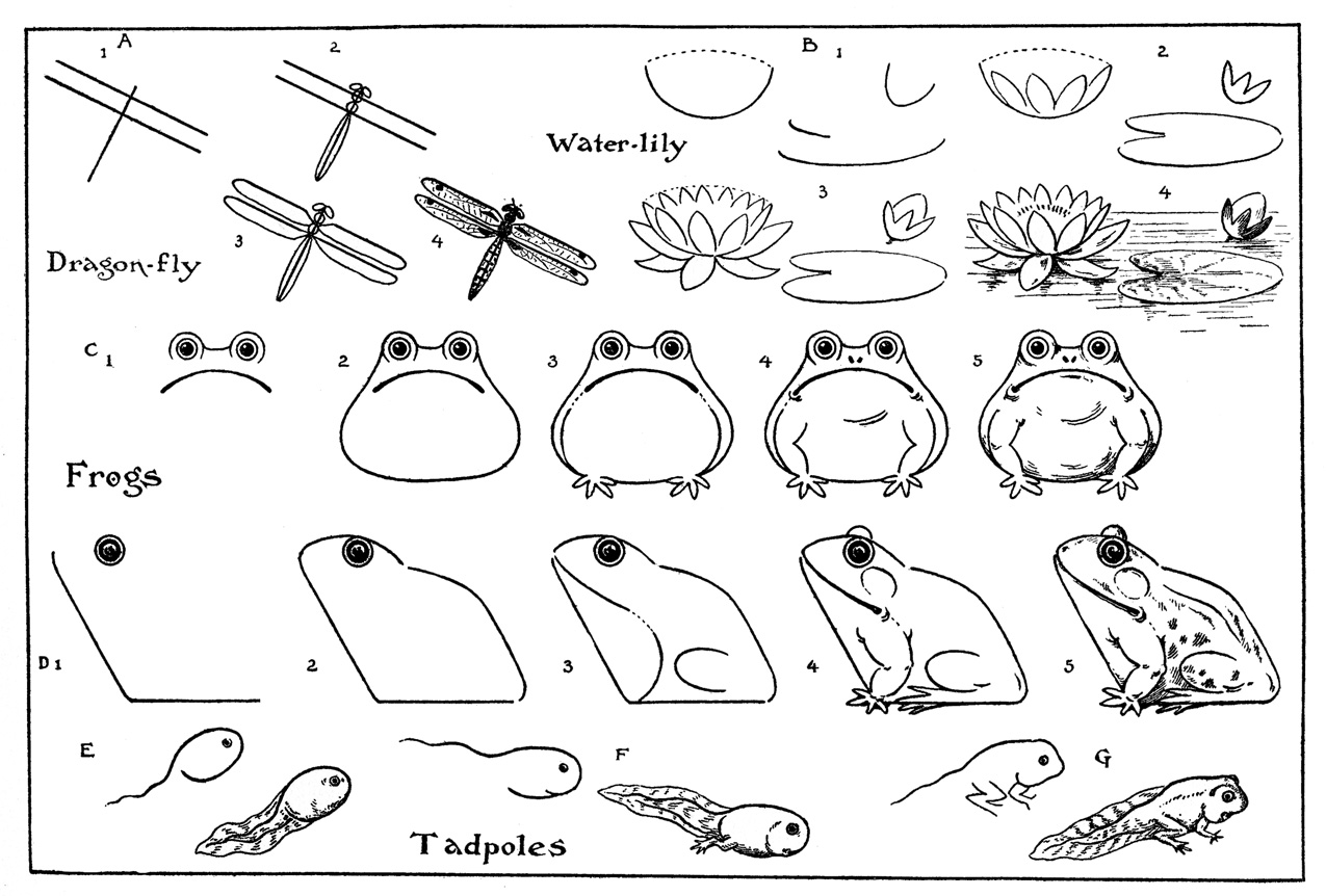 Vintage Kids Printable – Draw Some Frogs