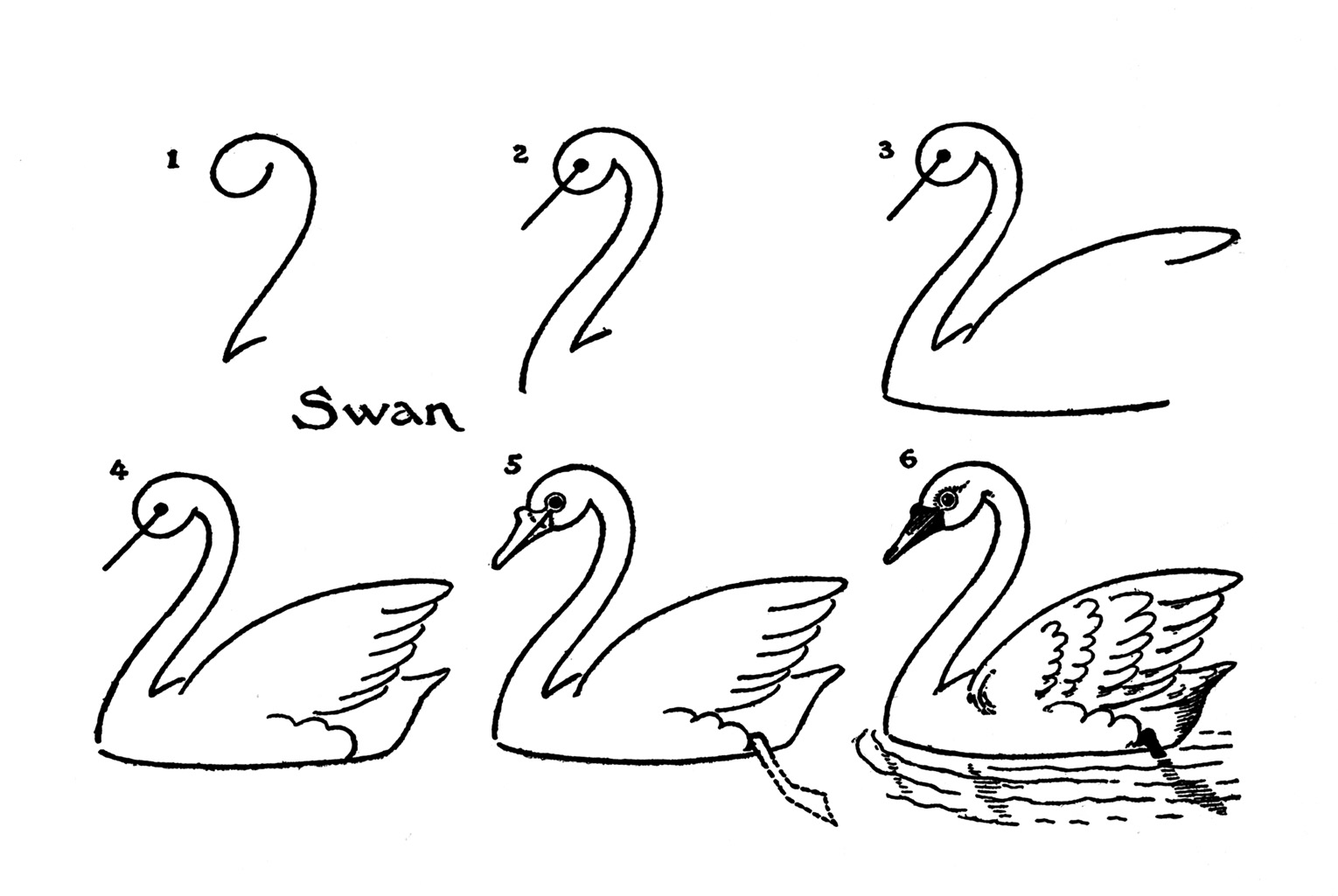 Vintage Kids Printable Draw Some Swans The Graphics Fairy