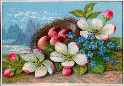 Vintage Image - Pretty Nest with Pink Eggs & Flowers