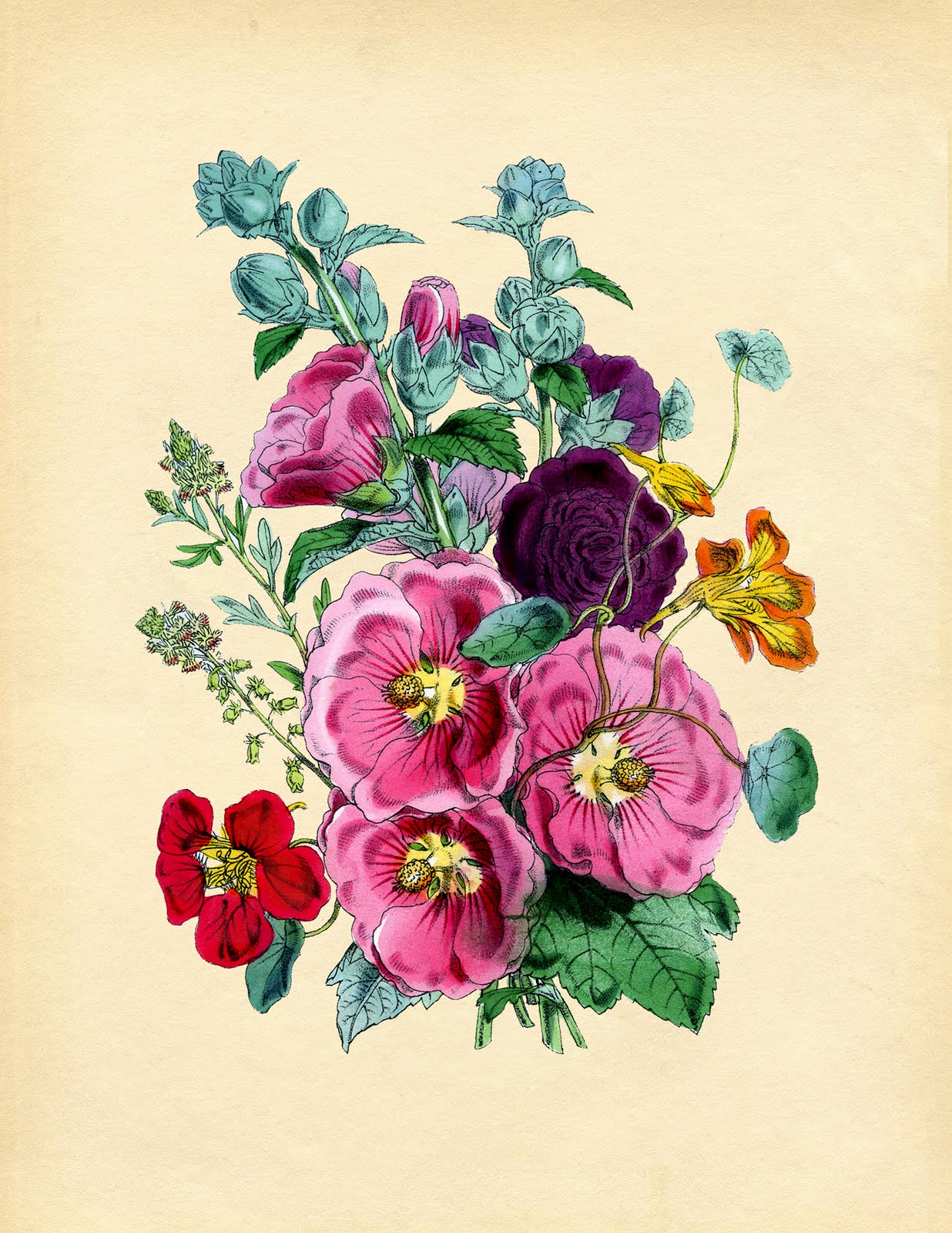 vintage instant art printable   hollyhocks   the graphics