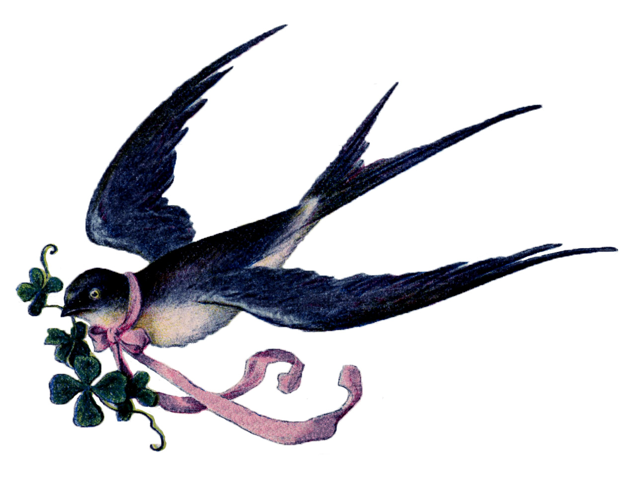 Lovely Lovely Swallow With Pink Ribbon Garland French