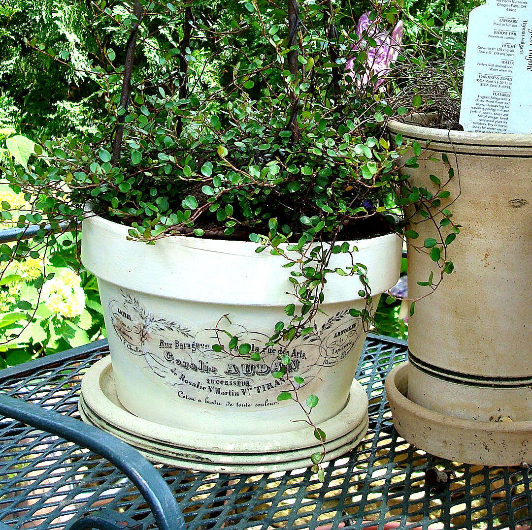 French Flower Pots & French Flower Pots - The Graphics Fairy