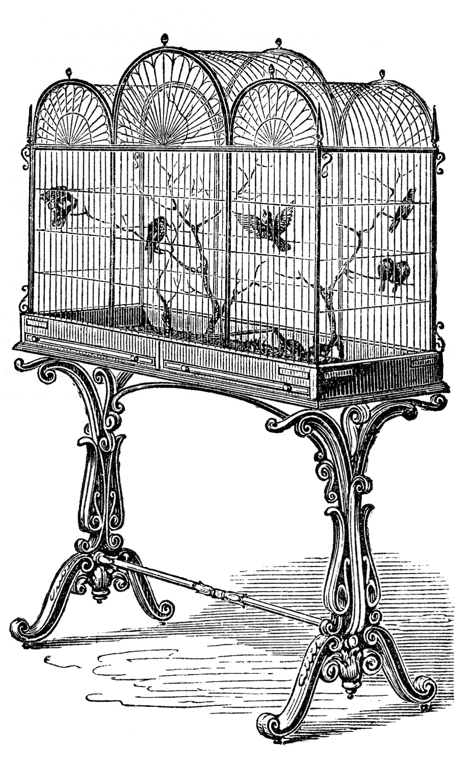 Vintage Stock Image Fancy Victorian Bird Cage The