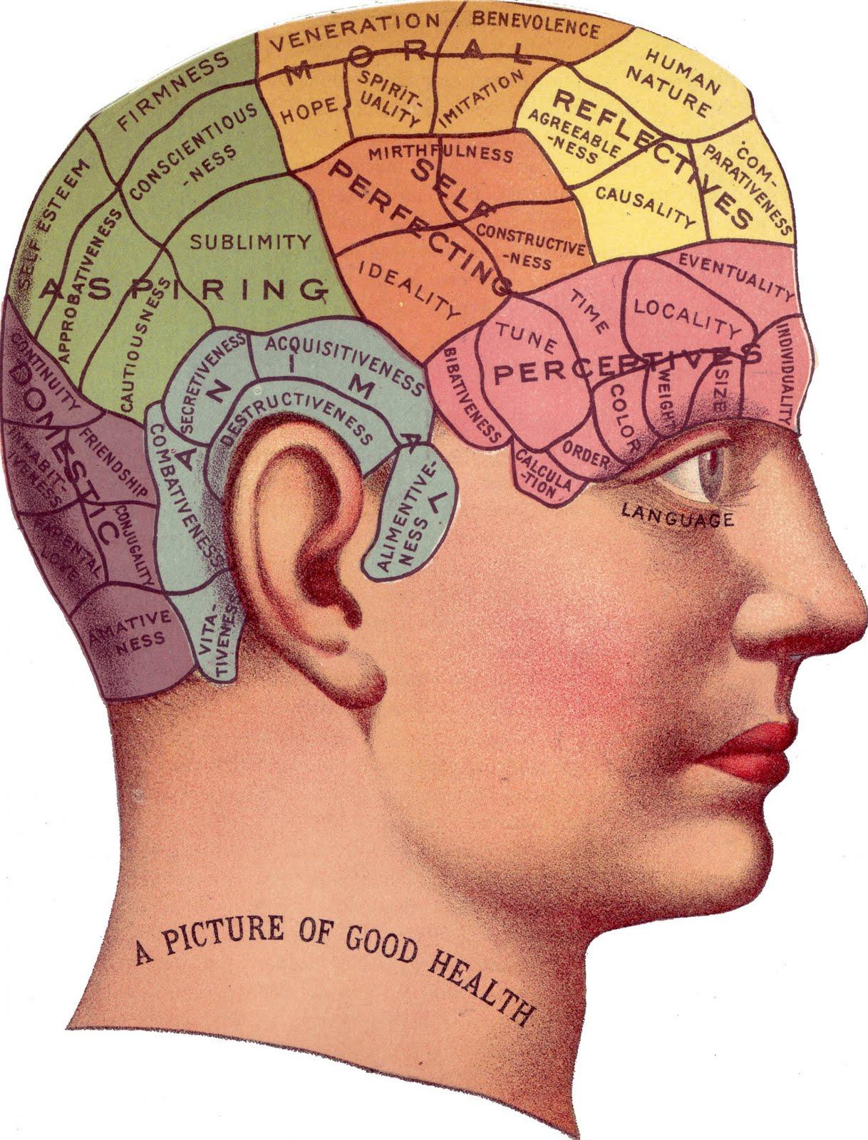 Mental illness paper mind brain