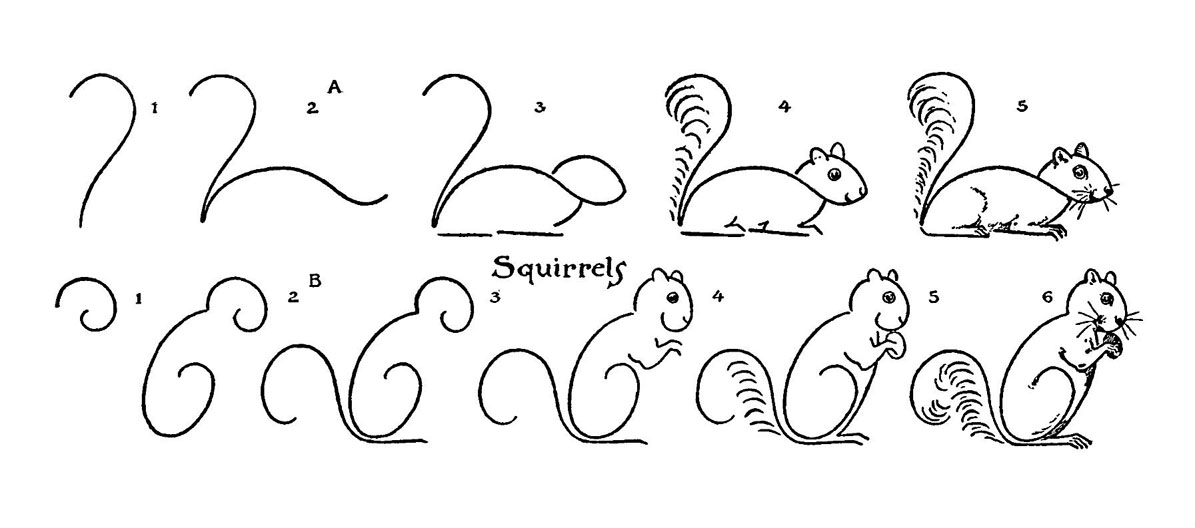 kids vintage printable draw some squirrels - How To Draw Animals Step By Step For Kids Printable