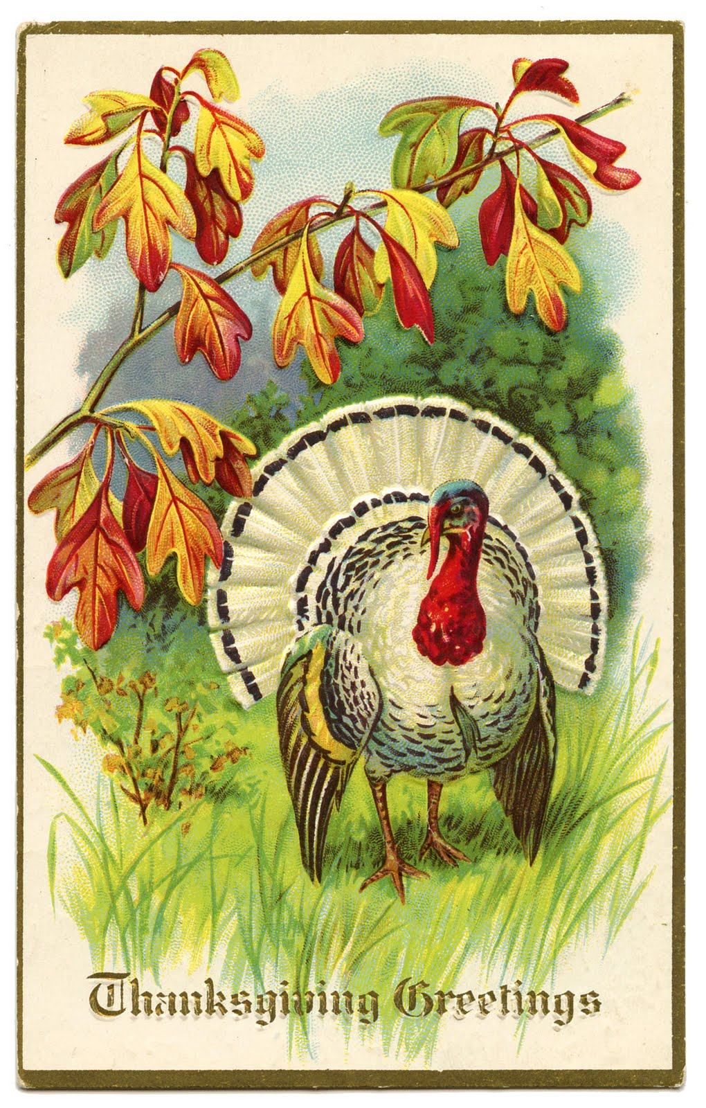 Vintage Thanksgiving Clip Art White Turkey The