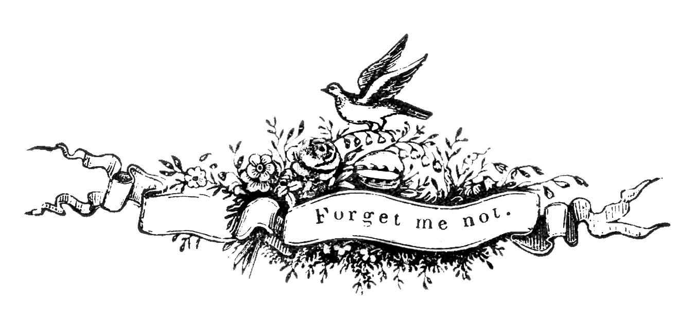 antique clip art pen flourished bird banner
