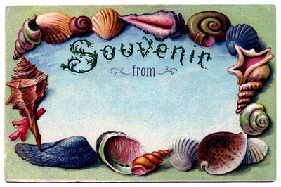 Vintage Clip Art - Souvenir Seashell Postcard #2 - The Graphics Fairy