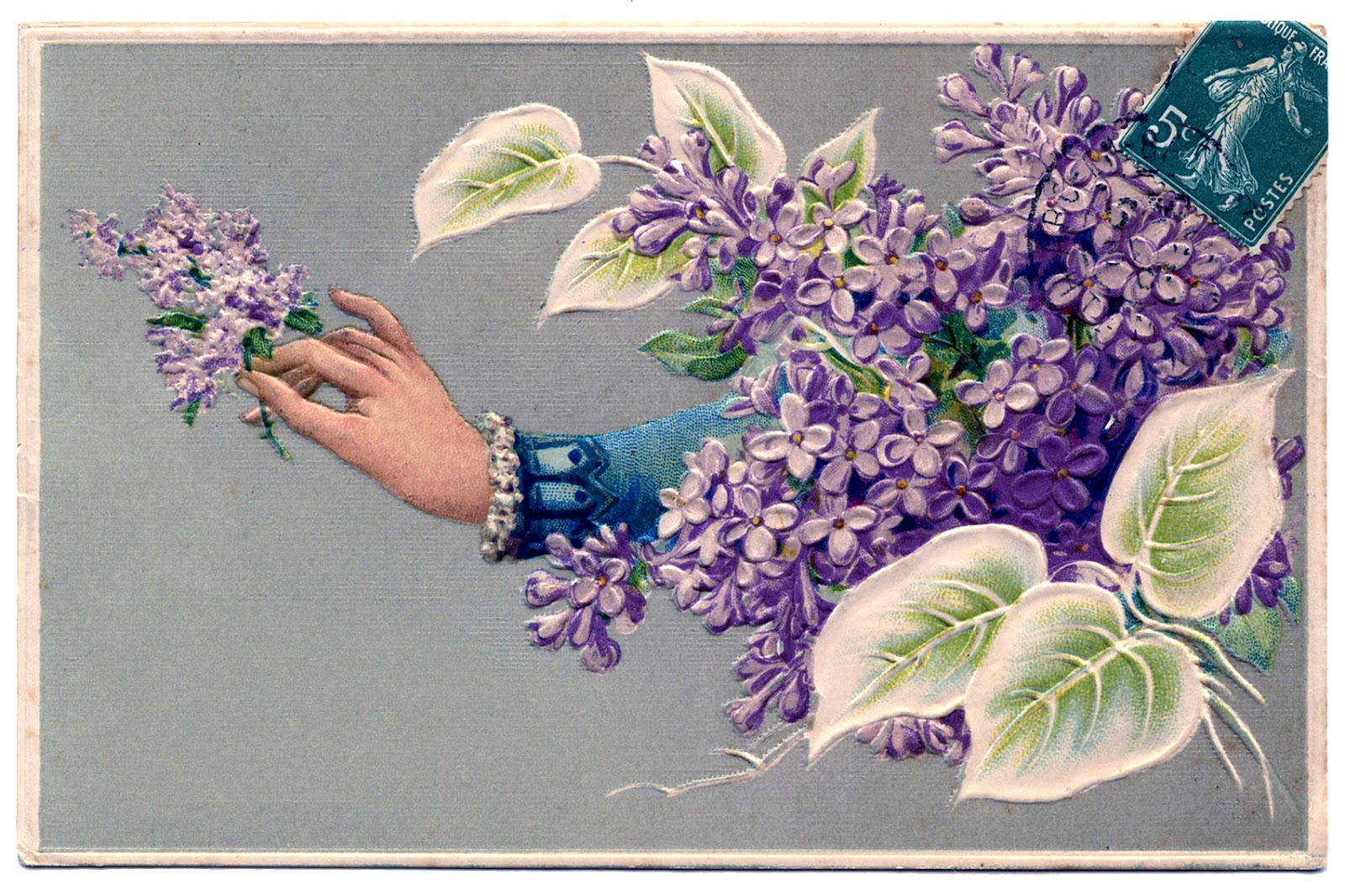 Old Fashioned Graphic Ladies Hand With Lilacs The