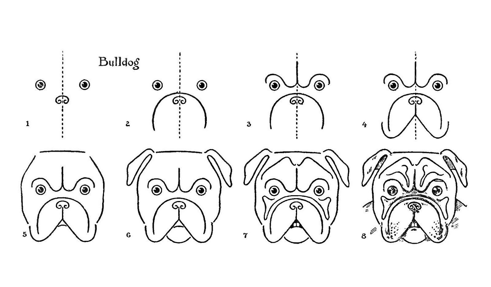 Line Drawing Baby Face : Vintage kids printable draw a bulldog the graphics fairy