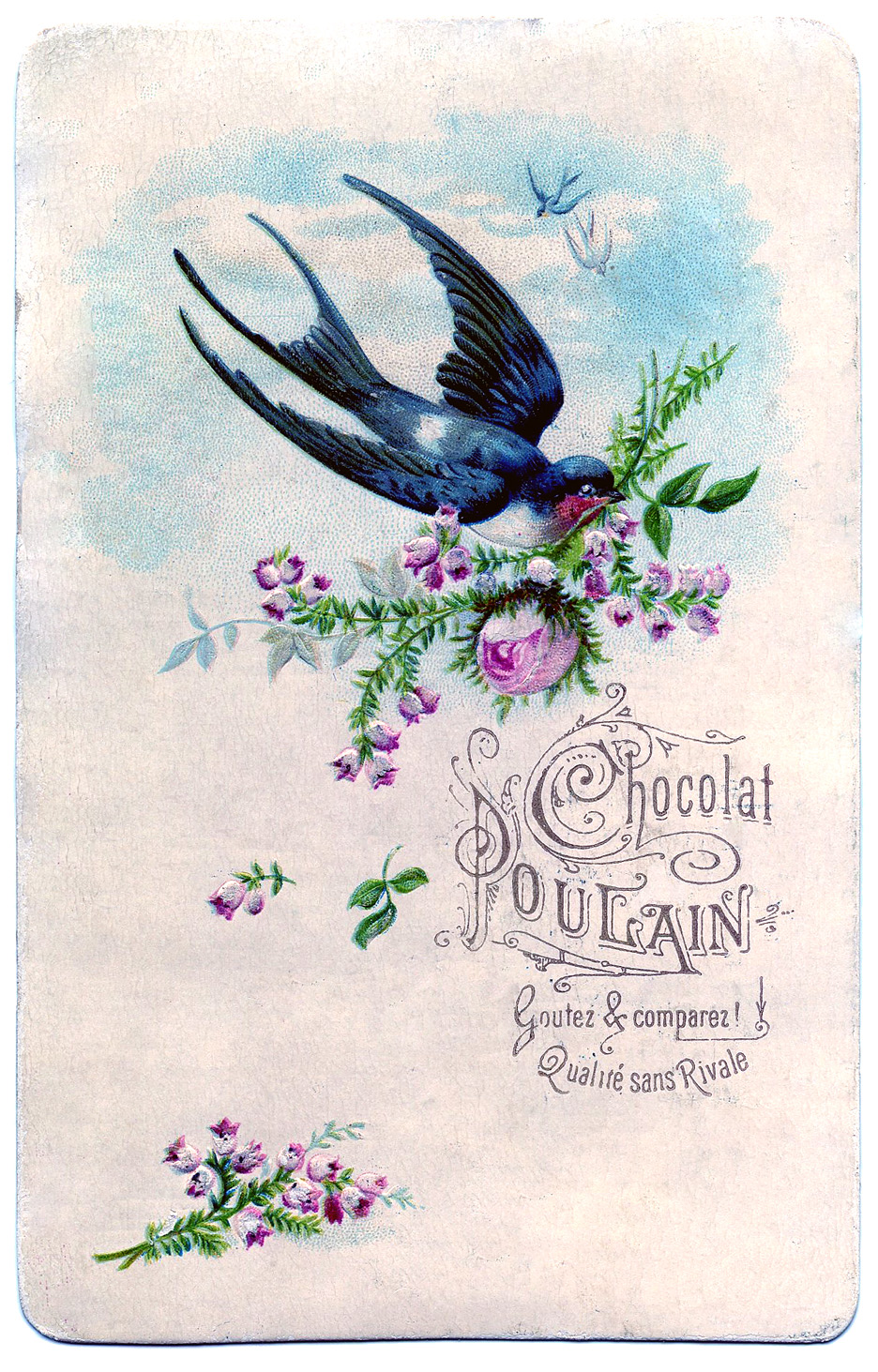 The Graphics Fairy: Pretty Swallow With Roses