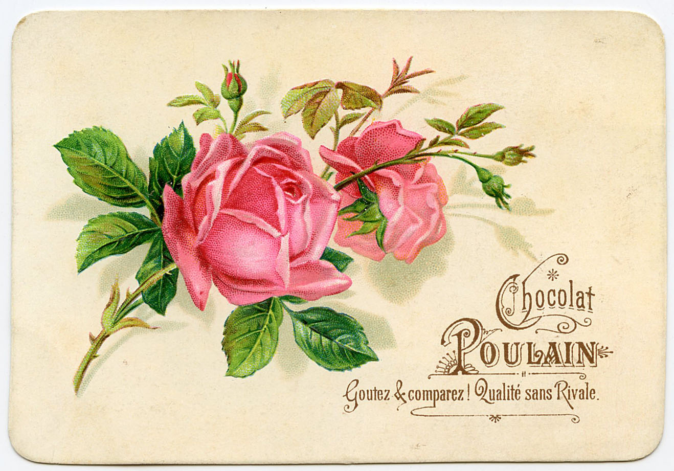 Vintage graphic french roses the graphics fairy - Architect binnen klein gebied paris ...