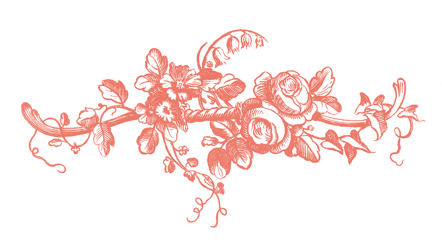 kwiaty kolorowanki do druku dla dzieci 3 additionally mister lincoln hybrid tea bush rose coloring page as well  in addition  also  together with  also jbh091230164199984d29e9c1a6c3 in addition floral70 furthermore French Roses GraphicsFairy2pk likewise rosa eglanteria or sweet briar rose coloring page besides 009 free valentine day coloring. on dozen roses flowers coloring pages