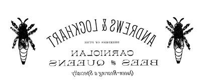 lighthouse patrick watson sheet music pdf
