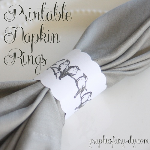 photograph relating to Printable Napkin Rings referred to as Printable Fowl Napkin Rings - The Graphics Fairy