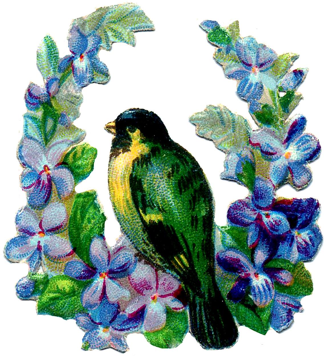 http://thegraphicsfairy.com/wp-content/uploads/blogger/-xN6YtGJWSNM/T9KtbF49I6I/AAAAAAAASK8/o5OMW7oKX6A/s1600/bird-green-flowers-GraphicsFairy.jpg