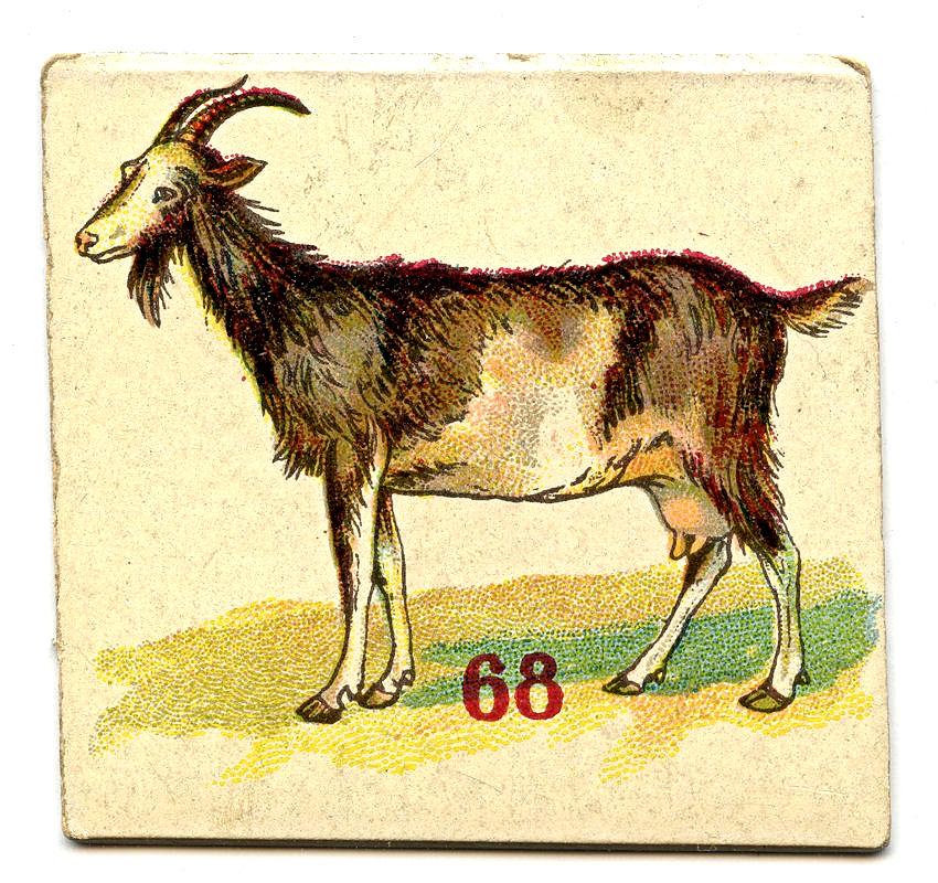 Free Vintage Clip Art - Donkey, Goat & Goose - The ...