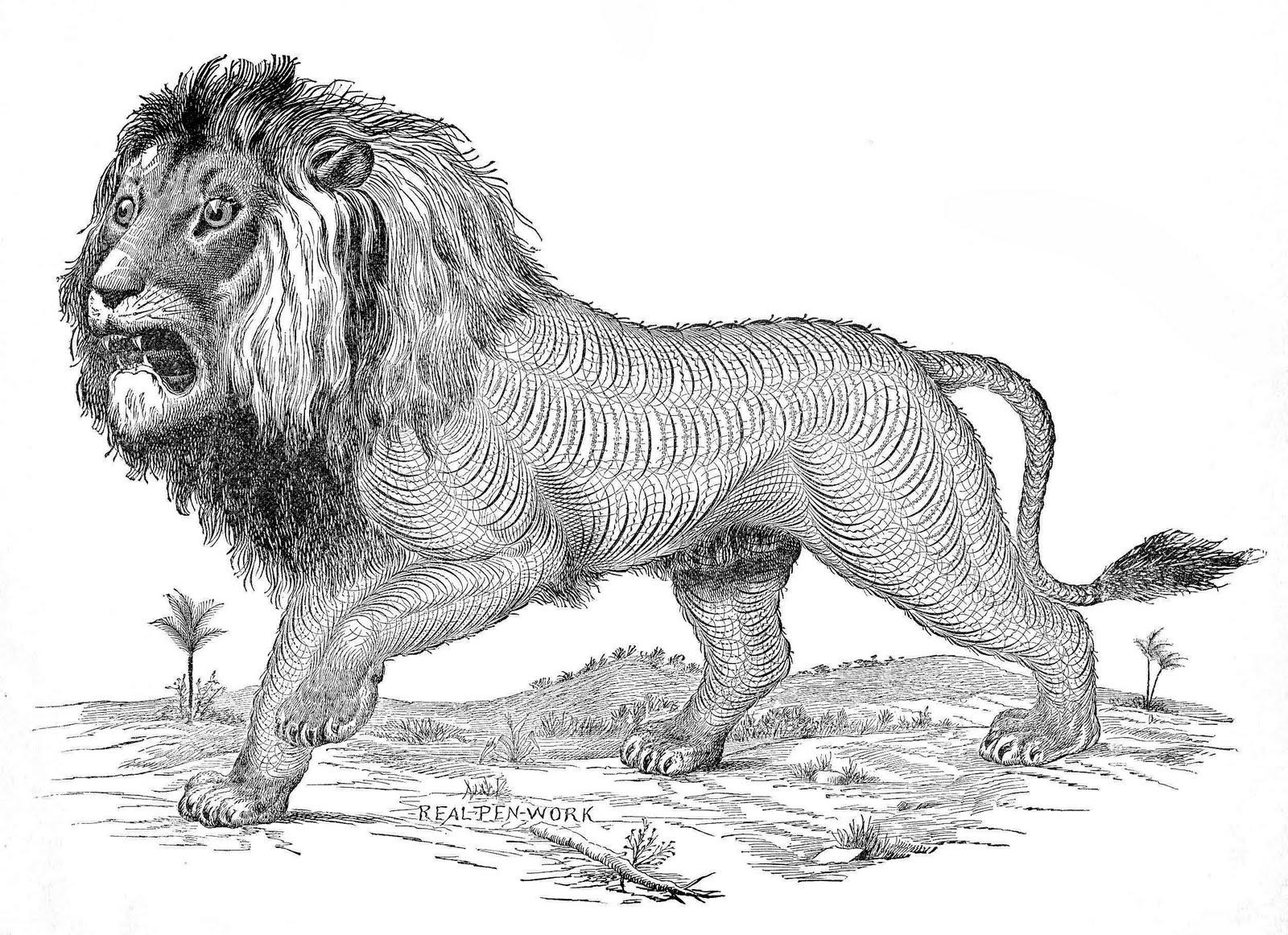 Free Antique Clip Art - Pen Flourished Lion - The Graphics ...