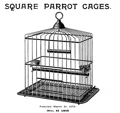 Antique bird cage drawing - photo#36