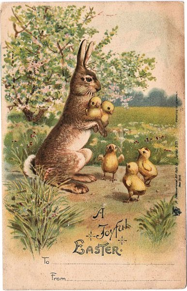 darling easter bunny w   chicks