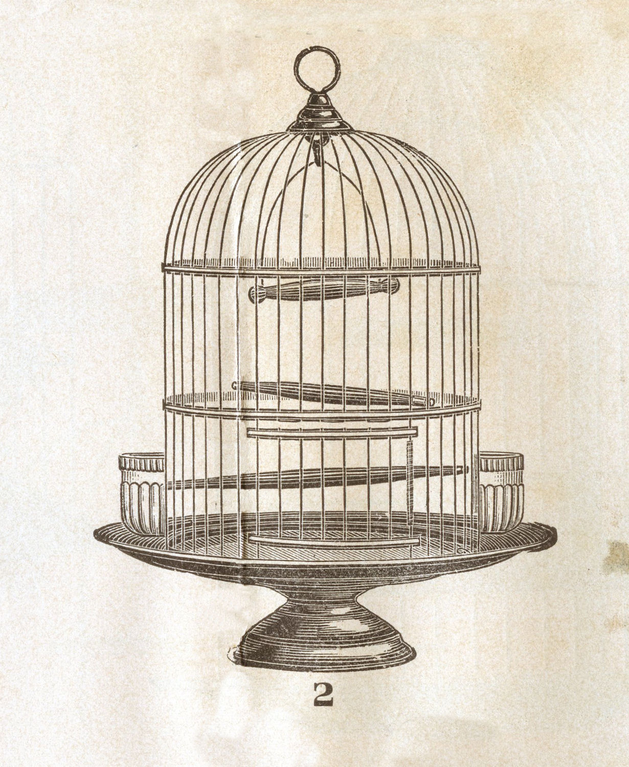 vintage clip art victorian bird cage the graphics fairy. Black Bedroom Furniture Sets. Home Design Ideas