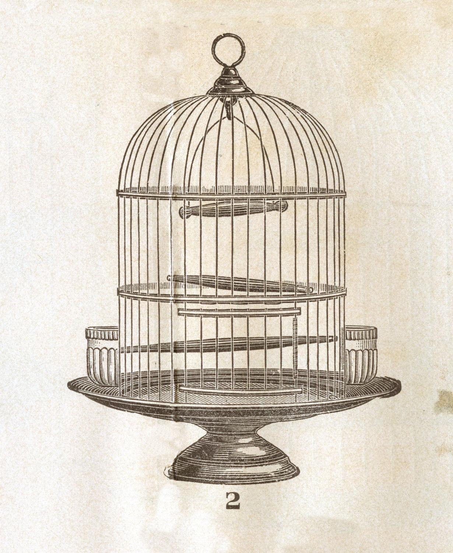 Vintage birdcage art | Etsy