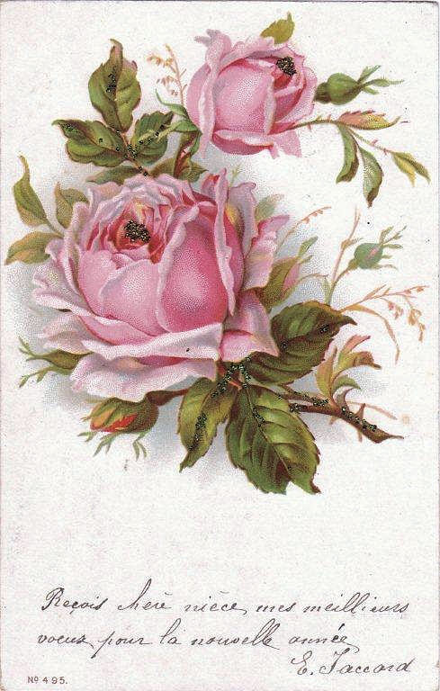 Vintage Clip Art     French Roses PostcardVintage Rose Clip Art