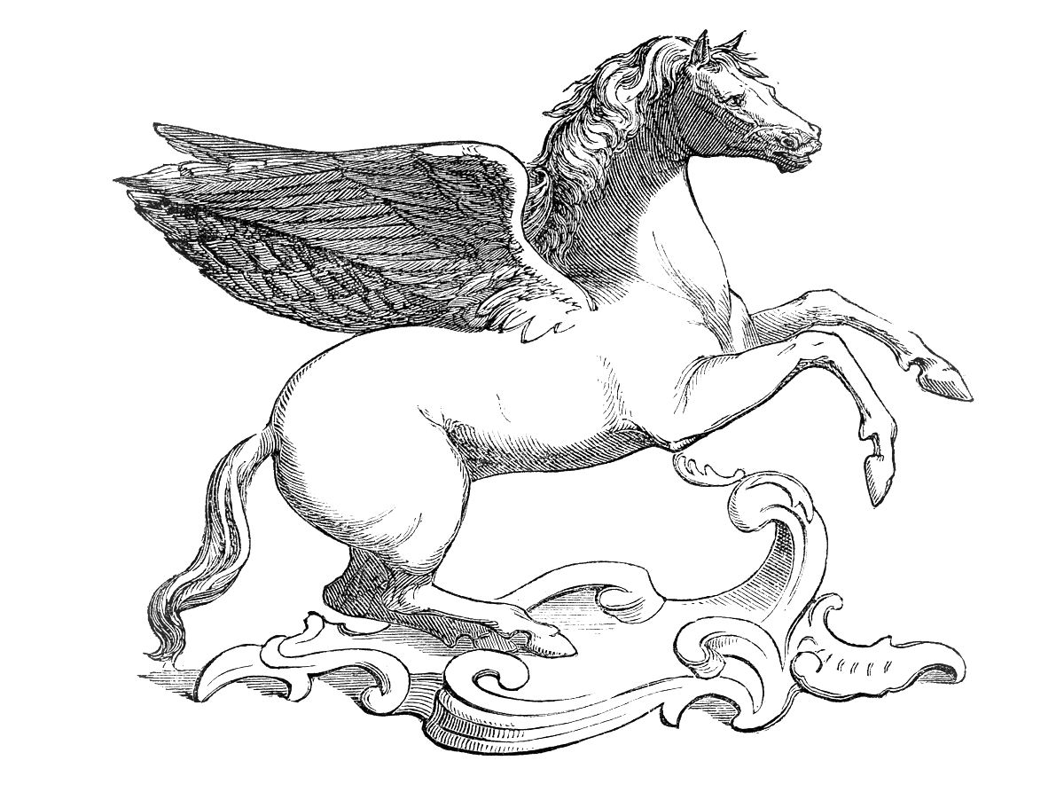 how to draw a winged horse