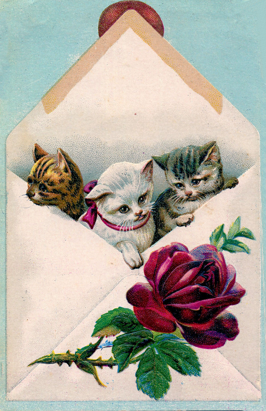 Vintage Image - Cats in Envelope - The Graphics Fairy