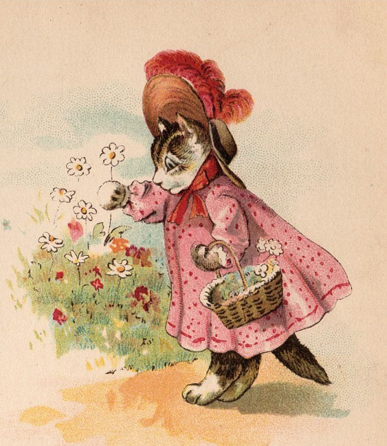 Victorian Graphic - Kitty in Pink Dress - The Graphics Fairy