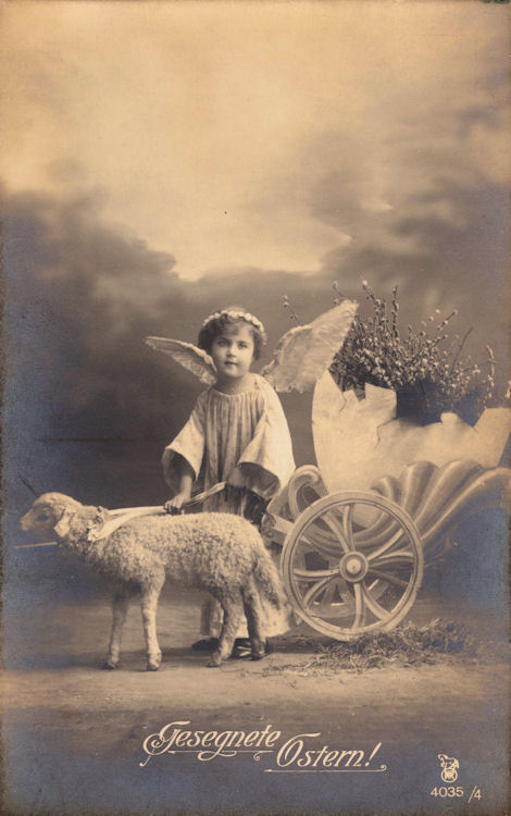 This Is A Darling Vintage European Postcard Real Photo Card Features Sweet Little Girl Dressed As An Angel Shes Accompanied By Fluffy White Lamb