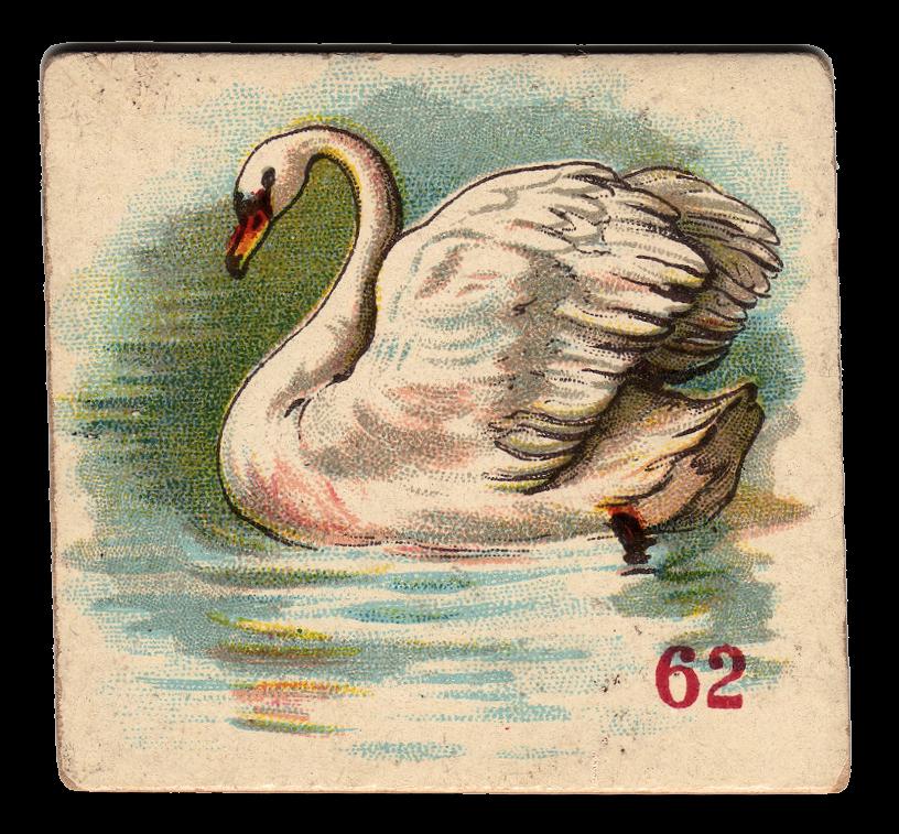 free victorian clip art beautiful swan the graphics fairy
