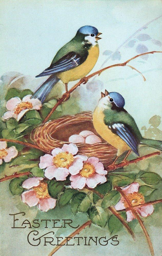 vintage spring clip art - photo #11
