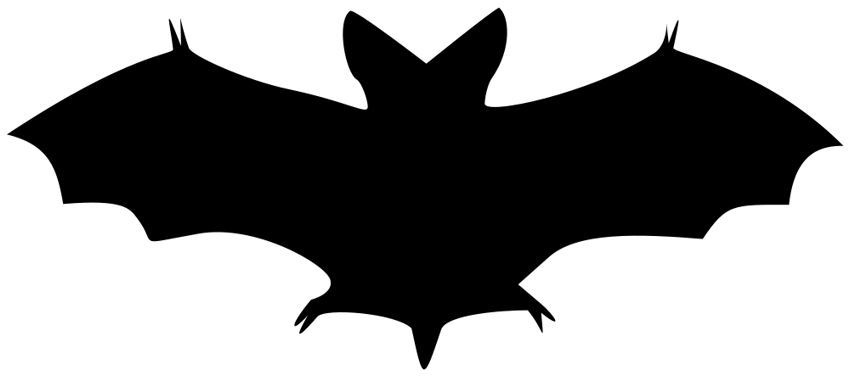 bat halloween clip silhouette craft graphics wonderful today collection
