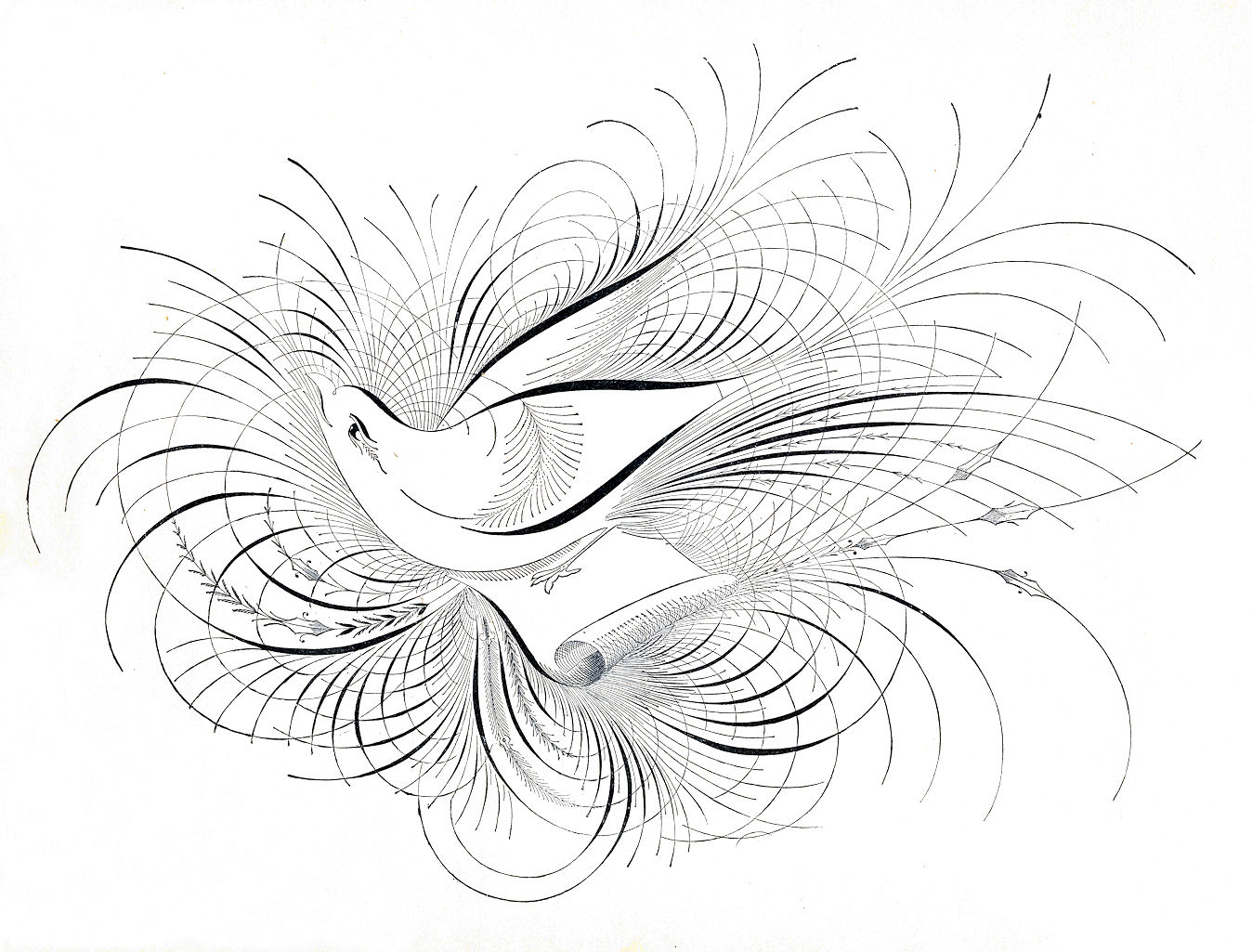 Calligraphy art bird pixshark images galleries